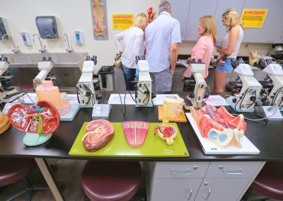 lab tables with human anatomy models of internal organs.