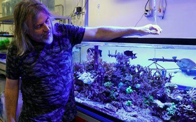 SDSU Ecologist Receives Prestigious Moore Foundation Award