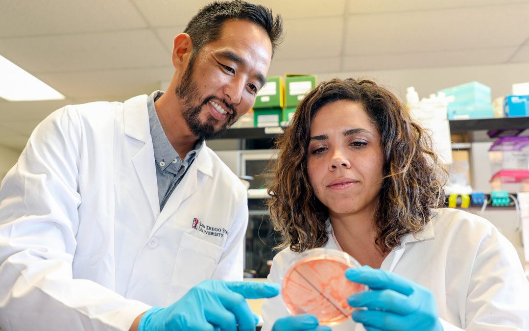 Marine Microbiologist Receives Major NSF Career Development Award